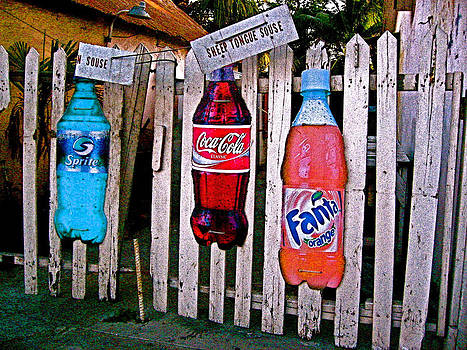 Venetia Featherstone-Witty - Bottles on a Fence