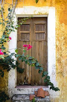 Oscar Gutierrez - Bougainvillea and wooden door