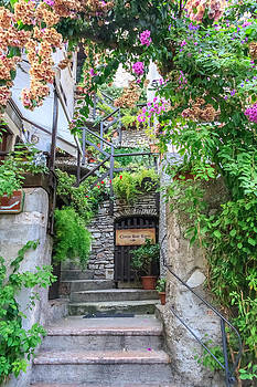 Bougainvillea steps by Susan Leonard