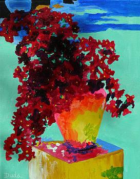 Bouganvillea Aglow by Susan Duda