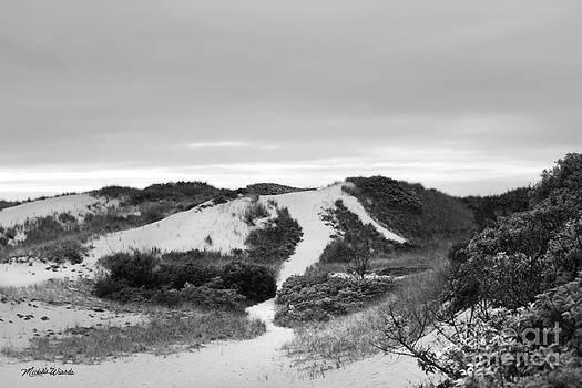 Michelle Wiarda-Constantine - Bound Brook Island Dunes Cape Cod
