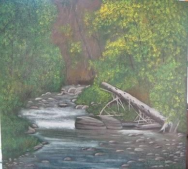 Boundary Creek  BC by Lorraine Bradford