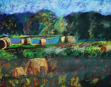 Bountiful by Donna Crosby