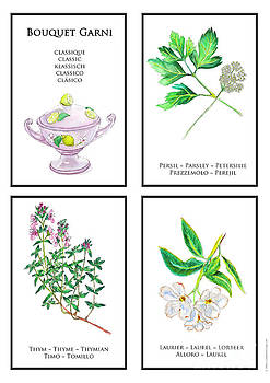 Bouquet Garni Classic Poster by Lydia Meier