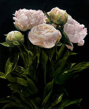 Bouquet of Peonies by Thomas Darnell