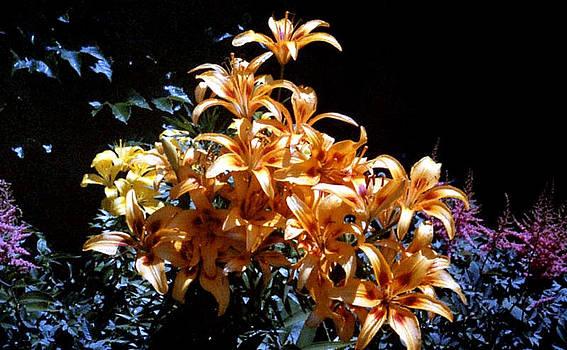 Stephen Proper Gredler - Orange Lilium Bouquet