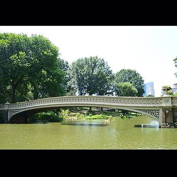 Eve Tamminen - Bow Bridge, Central Park