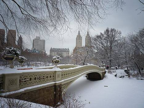 Bow Bridge Central Park in Winter  by Vivienne Gucwa