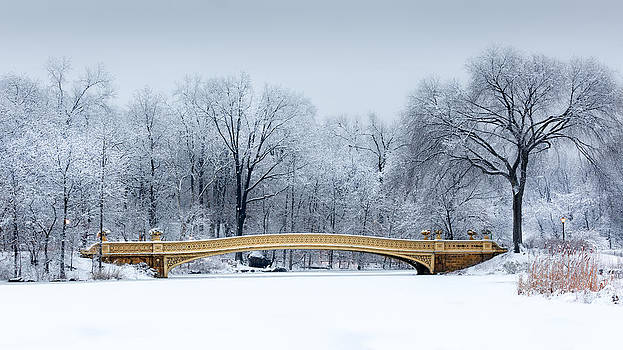 Bow Bridge in Central Park NYC by Mihai Andritoiu