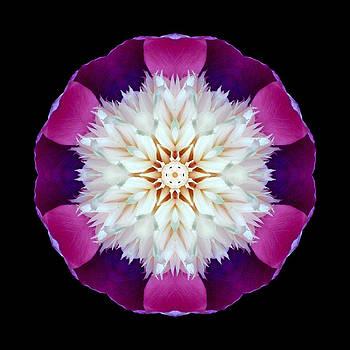 Bowl of Beauty Peony II Flower Mandala by David J Bookbinder