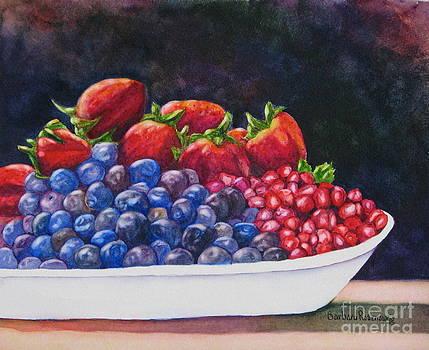 Bowl of Berries by Barbara Rosenzweig