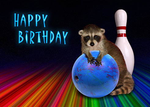 Jeanette K - Bowling Birthday Raccoon