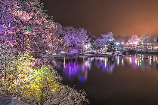 Bowring Park Winter Wonderland by Gord Follett