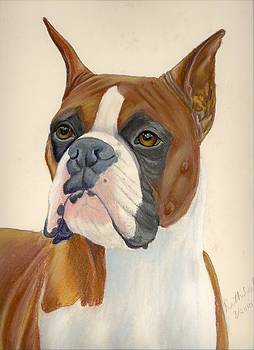 Boxer Dog by Ruth Seal