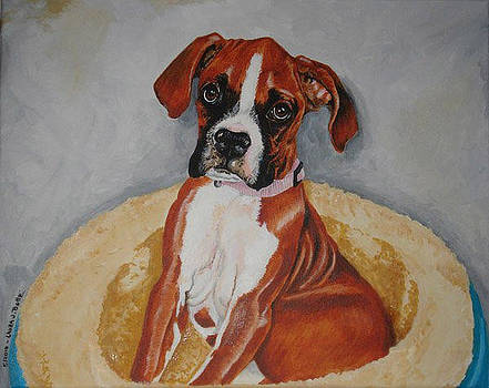 Boxer in a bed by Laura Bolle
