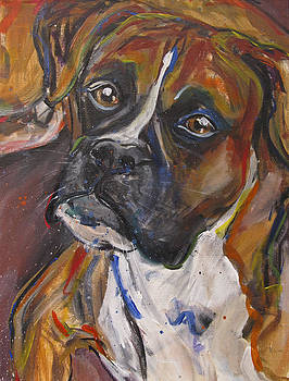 Boxer by Mary Gallagher-Stout