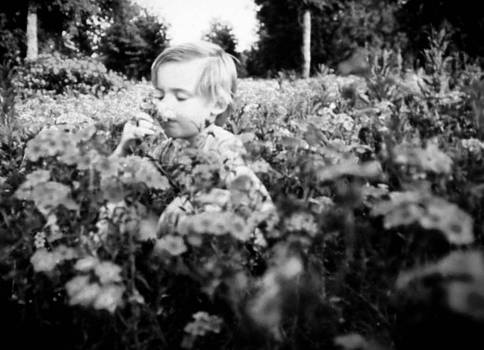 Christy Usilton - Boy and Field of Wildflowers