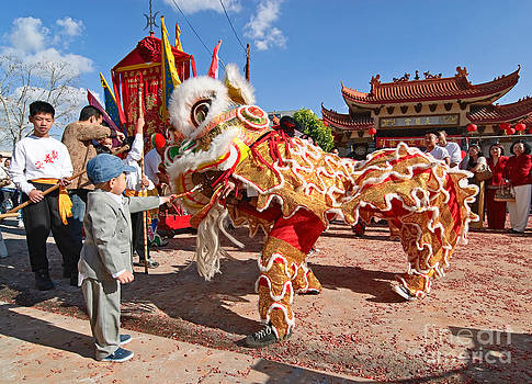 Jamie Pham - Boy giving a red envelope gift to a Lion Dancer. Chinese Lion Da