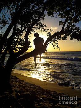 Boy In A Tree by Jo Ann Tomaselli