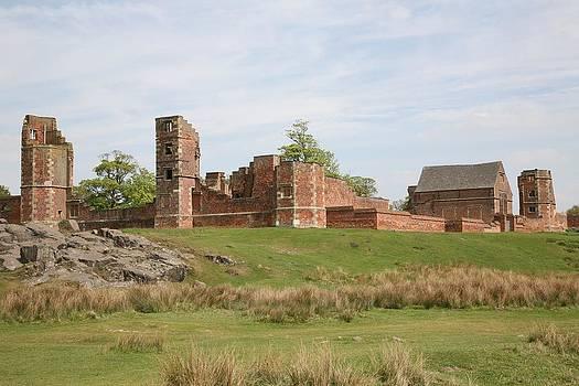 Mark Severn - bradgate park ruins