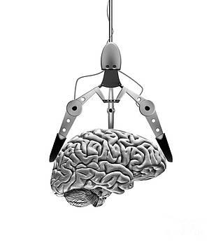 Mike Agliolo - Brain And Claw