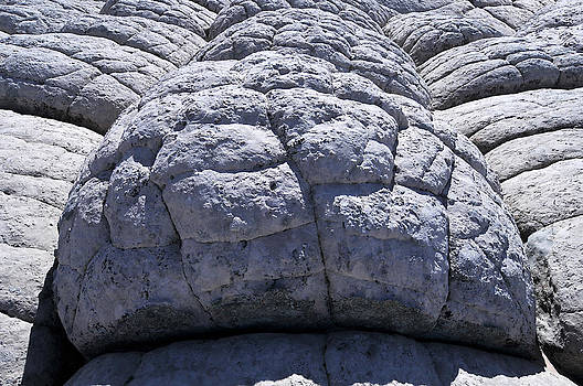 Brain Formation White Pocket Paria Plateau Northern Arizona 2010 by John Hanou