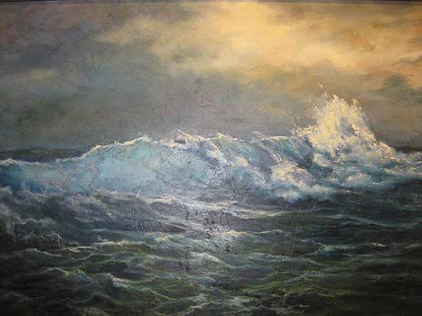Braking Wave by Carol Bitz