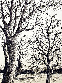 Branches by Carol Hart