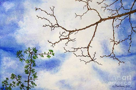 Branches in the sky by Barbara Pelizzoli