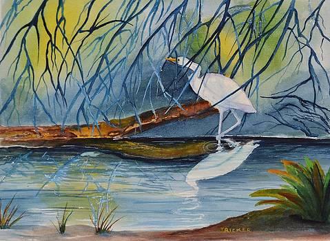 Branching Off by Jane Ricker