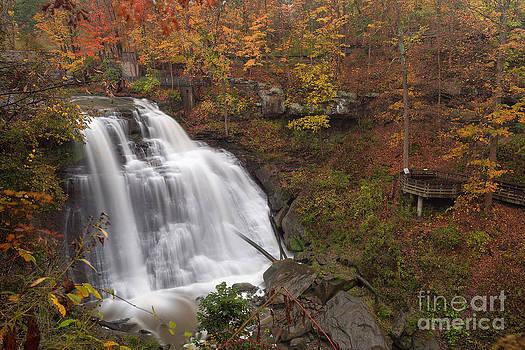 Joshua Clark - Brandywine Falls in Autumn