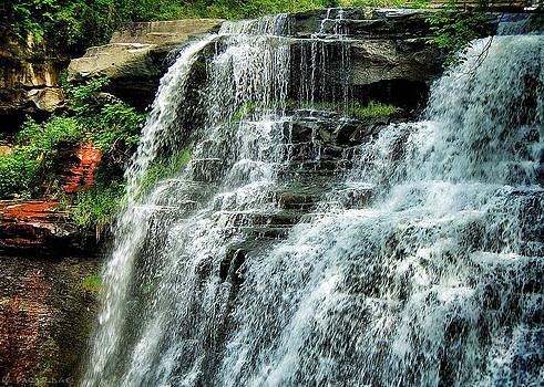 Brandywine Falls in Ohio by Robert Partridge