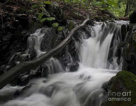 Brattleboro Waterfall 1 C by Henry Ireland
