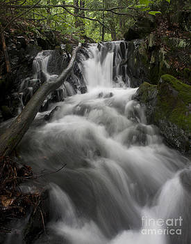 Brattleboro Waterfall 2 C by Henry Ireland