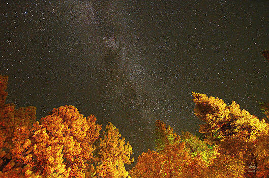 Brazos Stars I by Richard Estrada