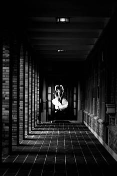 Bre Ballerine by Lolly M
