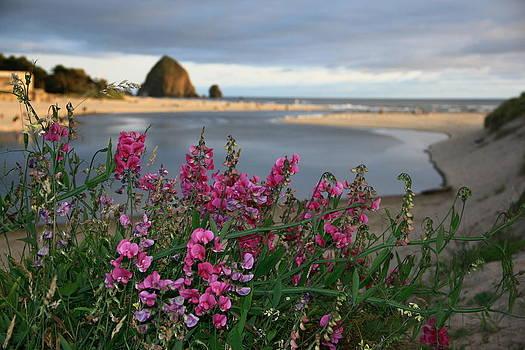 Breakers Point Oregon by Steven A Bash