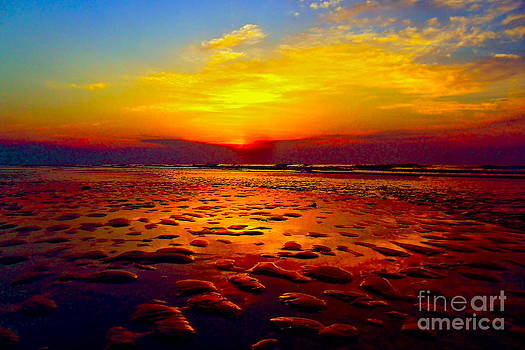 Breaking Dawn 1 by Kimberly Nickoson