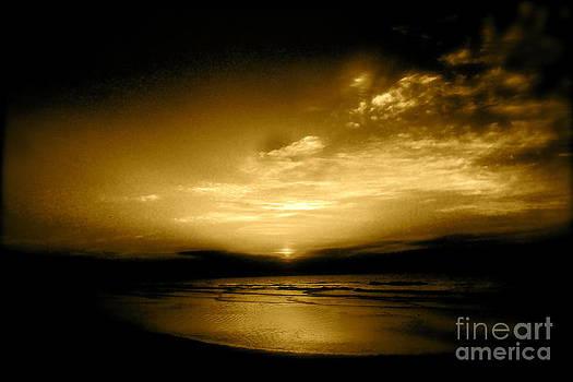 Breaking Dawn 3 by Kimberly Nickoson