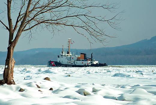 Breaking Ice by Nancy De Flon