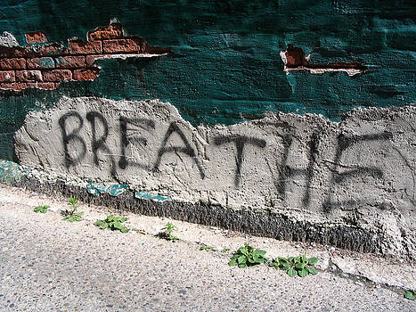 Breathe by Jim Schmidt