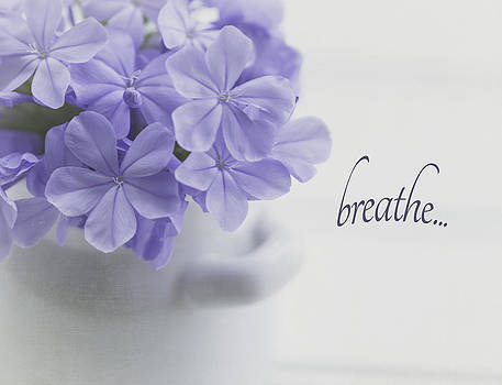 Kim Hojnacki - Breathe