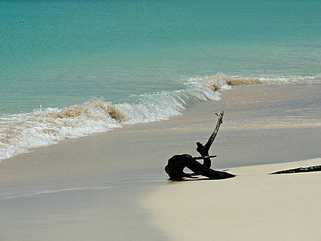 Kimberly Perry - Breathtaking Barbuda