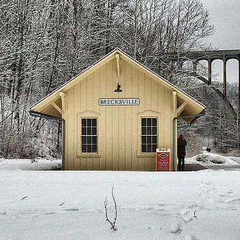 Brecksville Cuyahoga Valley Train Station by Patricia Januszkiewicz