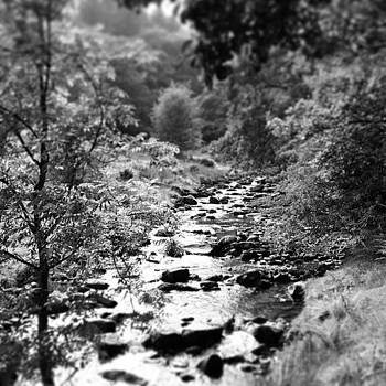 Brecon stream by Alex Nagle