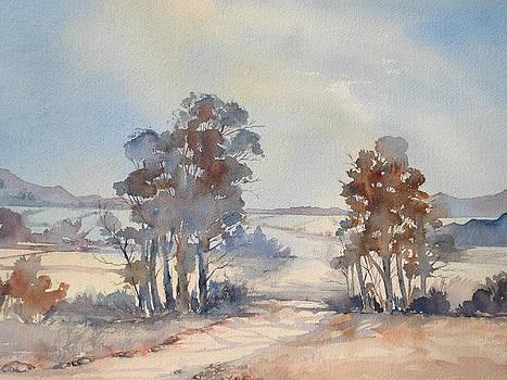 Bredasdorp by Marion Langton