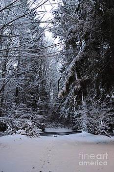 Bremerton Snowfall by Jackie Carr