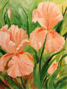 Brenda's Iris by Nancy Scheuermann