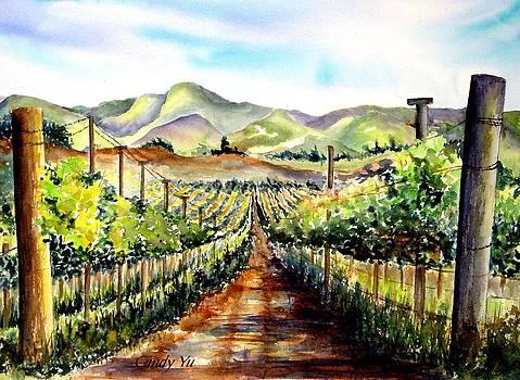 Brenda's Vineyard in Lompoc California  by Candy Yu