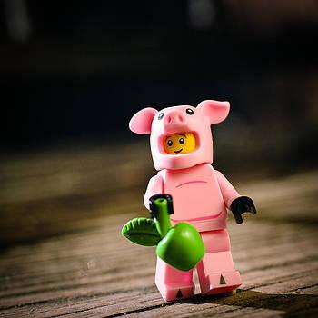 Brick Hog by Ernest M Aquilio